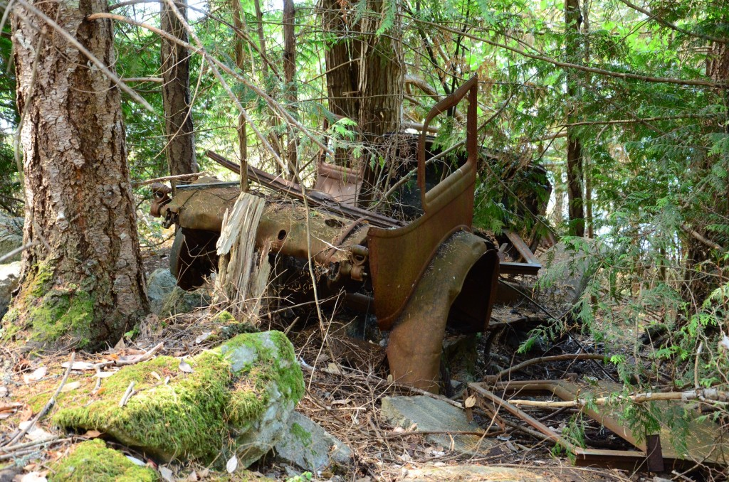 Abandoned Car at Burgoyne Bay Provincial Park