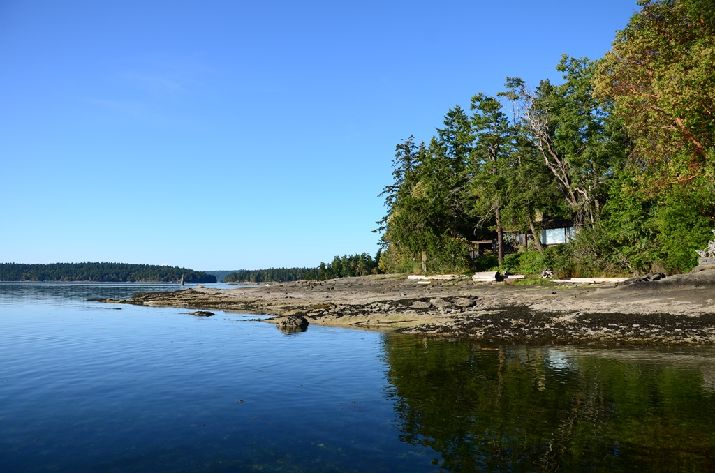 Arbutus Road Beach
