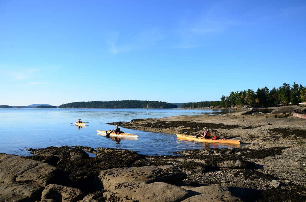 Arbutus Road Beach Kayakers