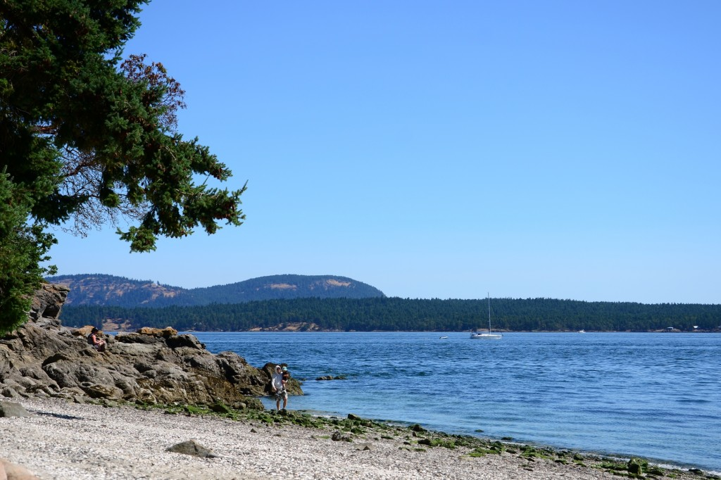 Beddis Beach Salt Spring Island Beaches And Lakes From