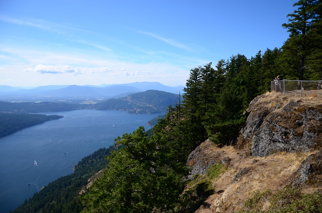 Mount Maxwell Viewpoint