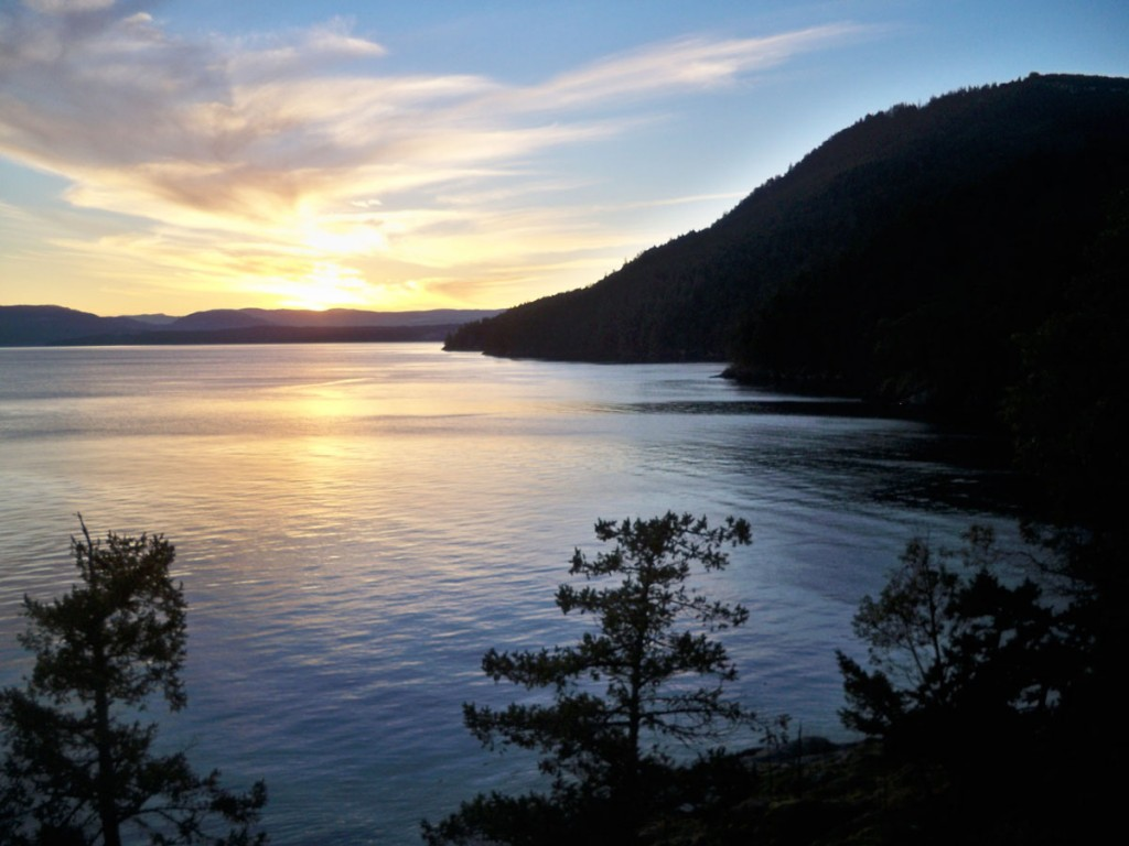 Salt Spring Island Accommodation - Daffodil Cove Cottage 2