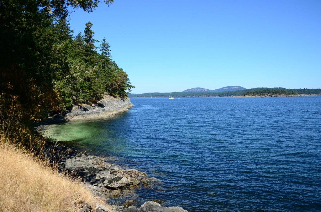 Salt Spring Island Hike - Beaver Point Hall to Yeo Point 5