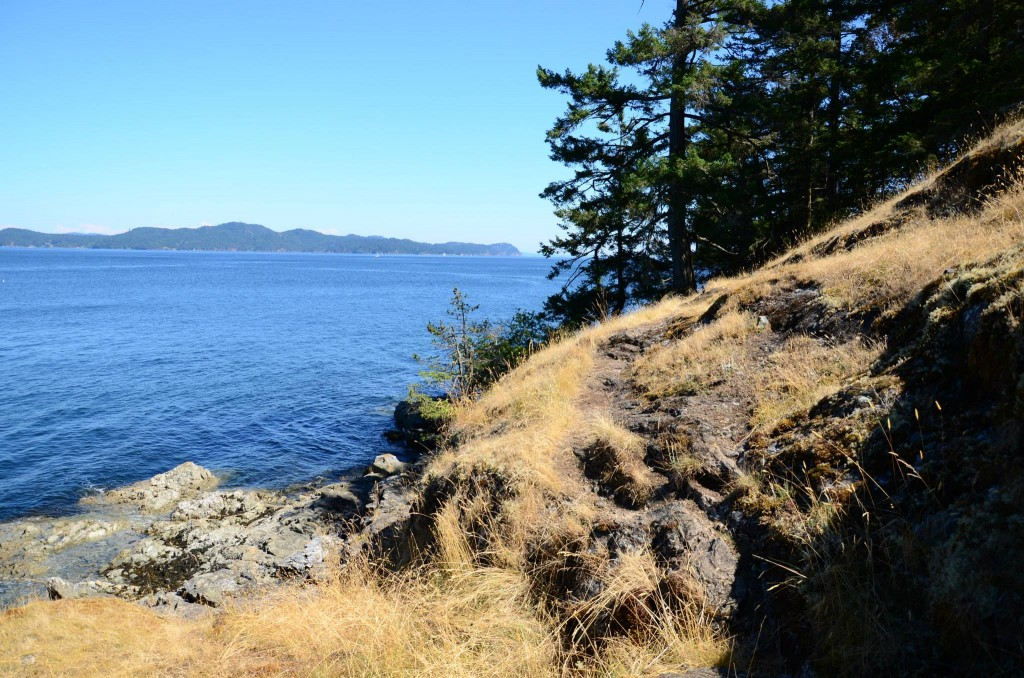 Salt Spring Island Hike - Beaver Point Hall to Yeo Point 8