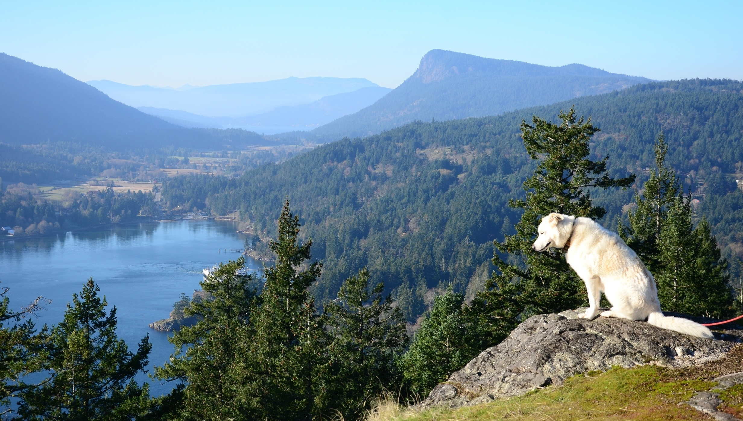 Top  Things To Do On Salt Spring Island