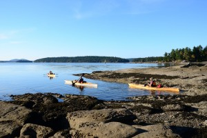 Kayaks on Salt Spring Island