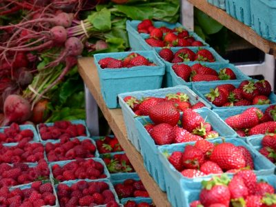Tuesday Farmers Market on Salt Spring Island