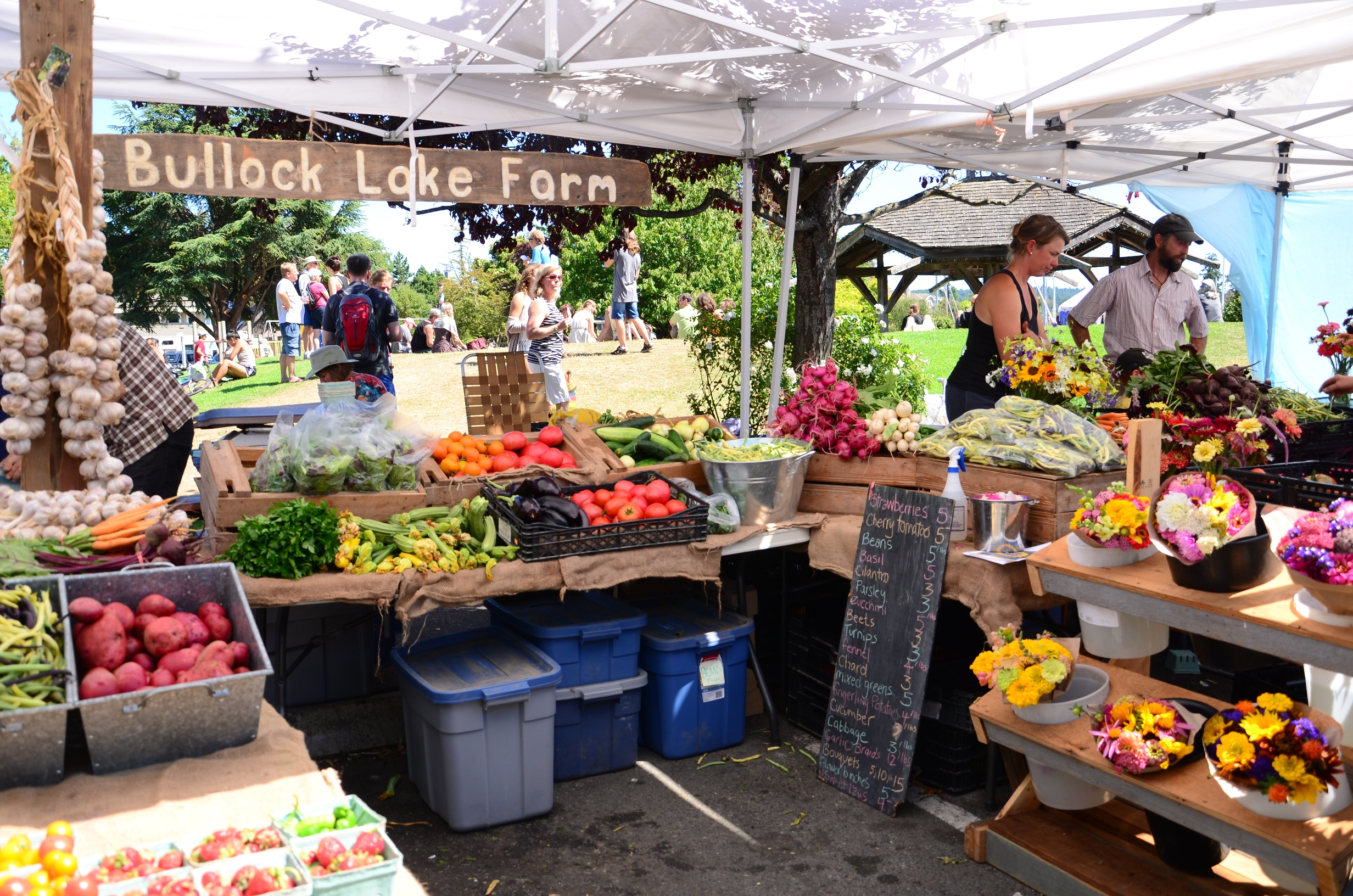 salt spring market things to do on salt spring island