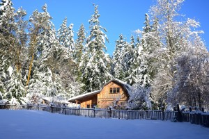 Winter on Salt Spring Island