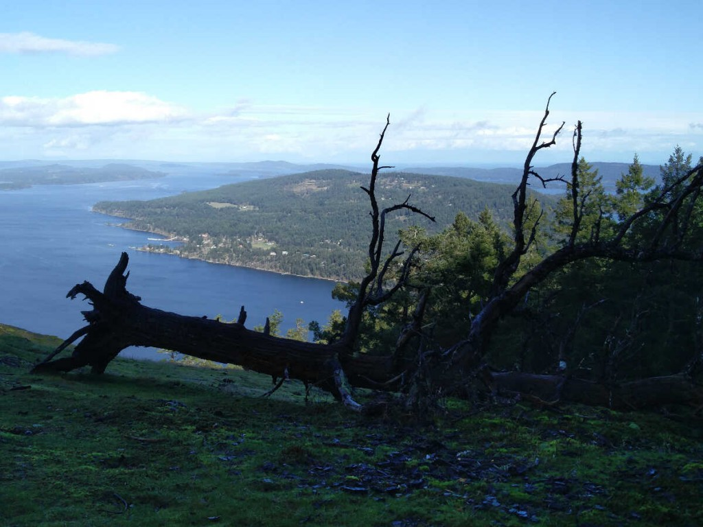 Mt Erskine via Juniper -Salt Spring Island Hike 29